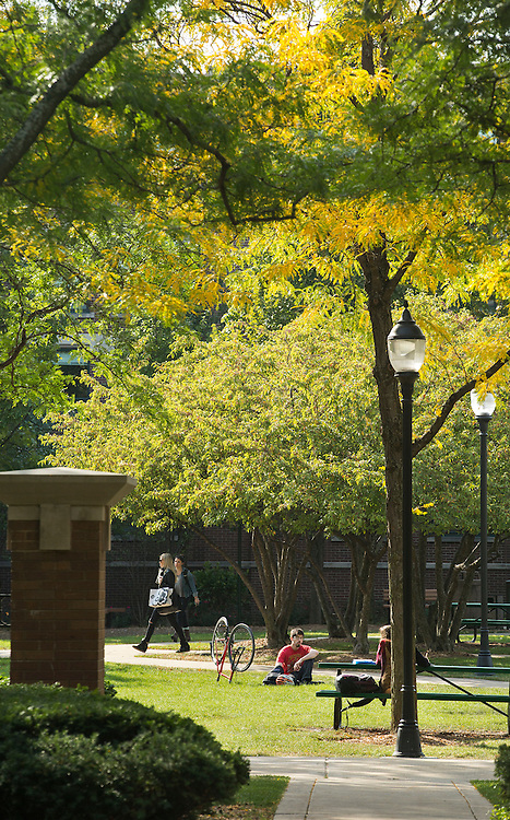 Fall foliage begins to appear on The Quad at DePaul University's Lincoln Park Campus the week of  Oct. 1, 2014.  (DePaul University/Jamie Moncrief)