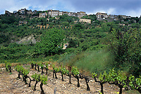 Quaint village on a hill above a vineyard, Gordes, Vaucluse, Provence, France.