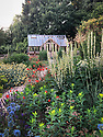 Greenhouse and garden, late June. Planting includes Verbascum chaixii 'Album', Allium caeruleum, Anthemis tinctoria 'Sauce Hollandaise', Euphorbia oblongata, Geum 'Fire Opal', Salvia 'Mainacht' ('May Night').