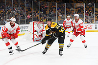 September 26, 2018: Boston Bruins center Noel Acciari (55) in game action during the NHL pre-season game between the Detroit Red Wings and the Boston Bruins held at TD Garden, in Boston, Mass. Detroit defeats Boston 3-2 in overtime. Eric Canha/CSM