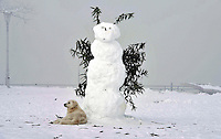 Pictured: A tall snowman in Ioannina, northern Greece.<br /> Re: Heavy snow affects most parts of Greece
