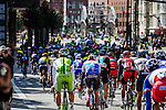 Peloton, Vattenfall Cyclassics, Hamburg, Germany, 24 August 2014, Photo by Thomas van Bracht
