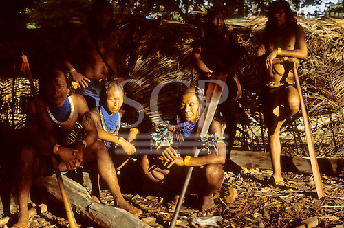 Altamira, Brazil. Group of Kayapo Indian warriors with blue bead necklaces and wooden borduna war clubs.
