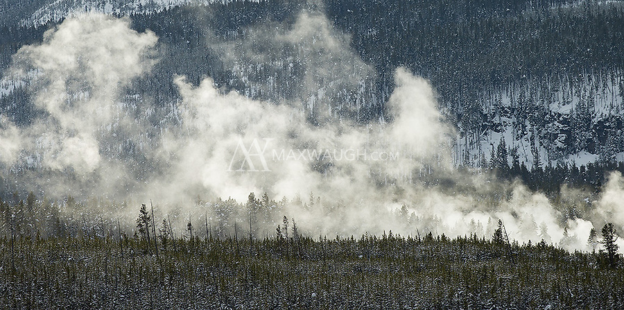 Steam rises from Norris Geyser Basin.