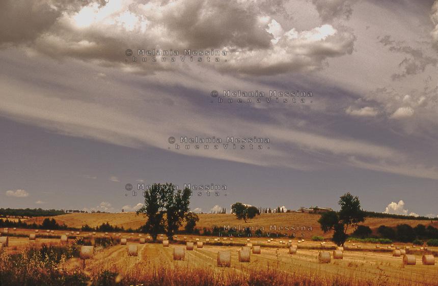 summer agricultural landscape.<br /> paesaggio agricolo in estate.