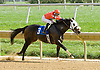 Scipabeat winning at Delaware Park on 10/10/12