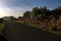 Country lane and drystone walls.Tenerife, Canary Islands, Spain