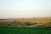 Fazenda Cagibi, Brazil. Productive agricultural land.