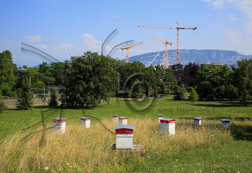 Switzerland - The hives of the apiary in the UNO's Ariana Park in Geneva. ///Suisse - Les ruches du rucher du parc de l'Ariana à l'ONU à Genève.