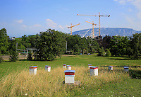 Switzerland - The hives of the apiary in the UNO's Ariana Park in Geneva. ///Suisse - Les ruches du rucher du parc de l'Ariana à l'ONU à Genève.