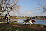 2012 Husky Racing at Grimsthorpe Castle