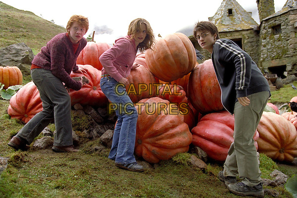 DANIEL RADCLIFFE, EMMA WATSON & RUPERT GRINT.in Harry Potter And The Prisoner of Azkaban.Filmstill - Editorial Use Only.CAP/AWFF.supplied by Capital Pictures.