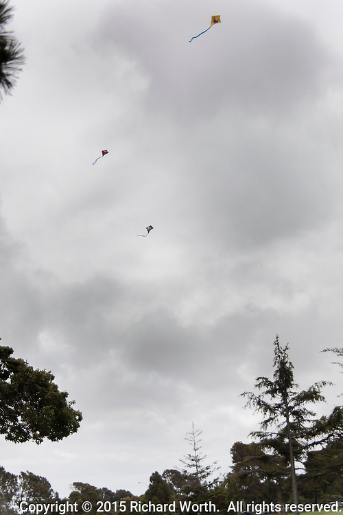 Like exclamation marks high overhead, kites soar above an urban park on a windy and cloudy day.