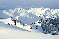Selkirk Wilderness Skiing. Oldest snowcat skiing operation in the world. Goat Range, West Kootenay, BC