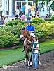 Golden Production before The Obeah Stakes (gr 3) at Delaware Park racetrack on 6/14/14