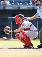 Ryan Lavarnway - Peoria Javelinas - 2010 Arizona Fall League.Photo by:  Bill Mitchell/Four Seam Images..