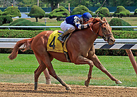 Scenes from around the Saratoga Race Course on Travers Day, Aug. 26, 2017.   Threefiveindia, ridden by Javier Castellano and trained by Chad Brown, wins race four.