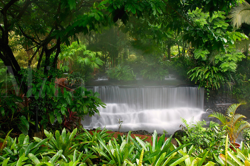 Stream flowing through Tabacon Hot Spring Resort and Spa, Costa Rica.