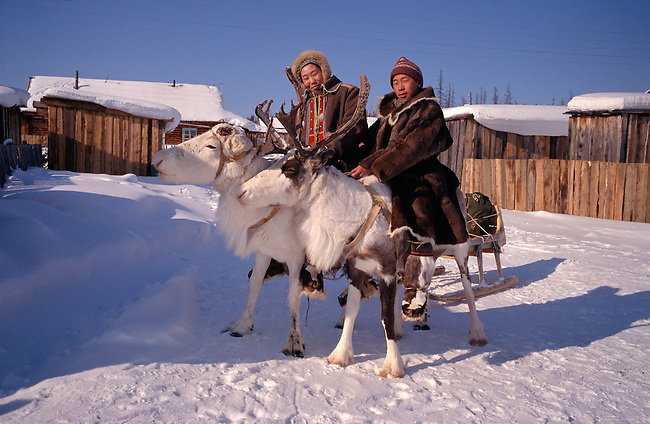 Two young Evenks riding draft reindeer in Surinda. Evenkiya, Siberia, Russia