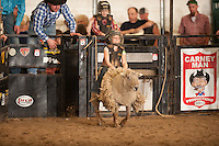 SEBRA - Chatham, VA - 3.12.2016 - Mutton Busting