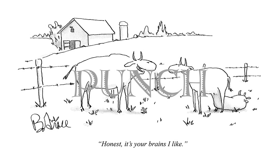 """""""Honest, it's your brains I like."""""""