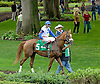 Nouveau Rich before The Bob Magness Derby at Delaware Park on 8/27/12
