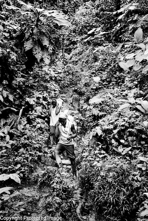 Displaced people returning home, some after more than 6 years. The journey will take all day going thru thick mountain jungles and then along a river..Baudo, El Choco.Colombia 2003<br />