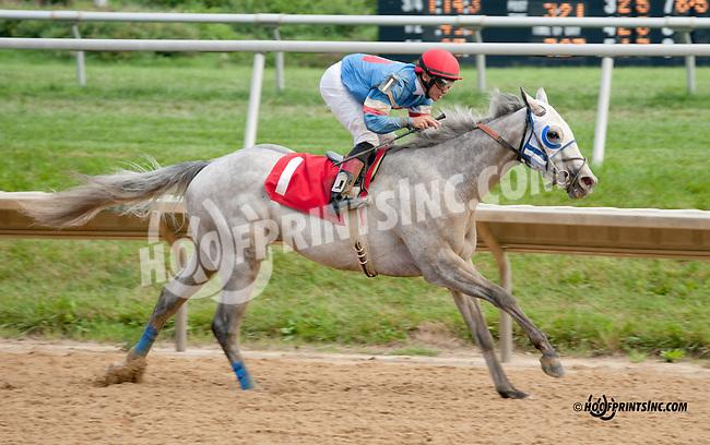 Hiram winning at Delaware Park on 8/10/13
