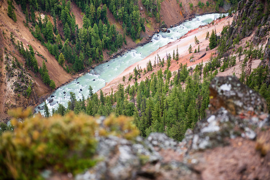 The Yellowstone River runs chalky green after a rain storm through the Grand Canyon of the Yellowstone in Yellowstone National Park. The river is colored after rains by the rhyolitic soil in the upper canyon.
