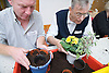 Men taking part in a Thrive gardening workshop for visually impaired people visiting the NRSB,  The use of yellow and red boxes help visually impaired people such as those with macular degeneration,