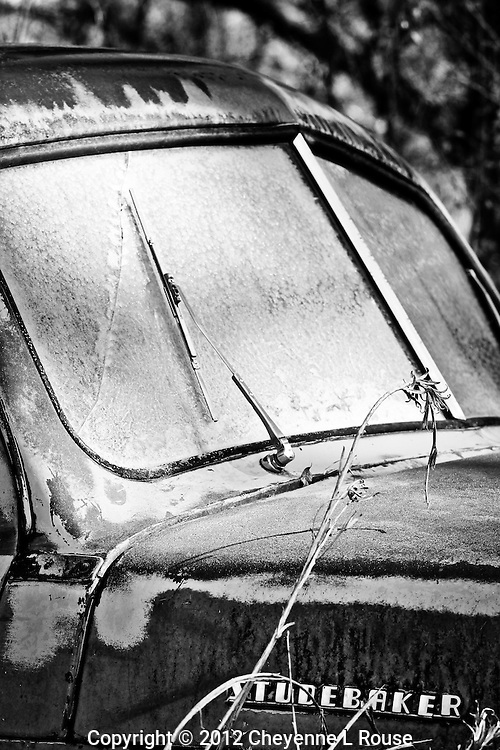 Frosty Studebaker Truck - New Mexico - winter - Black and White<br /> All rights reserved