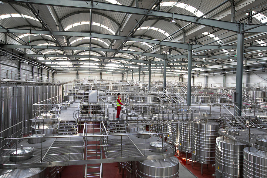 China - Ningxia - The fermentation room of Pigeon Hill Winery. <br />With more than 1,200 hectares of vines, Pigeon Hill is one of the biggest wineries in the region. Thanks to its total tank capacity of 6,000 tons, it can produce up to five million bottles per year<br />of high-quality, low-priced commercial wine.