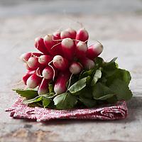 Gastronomie générale/ Radis roses - Stylisme : Valérie LHOMME