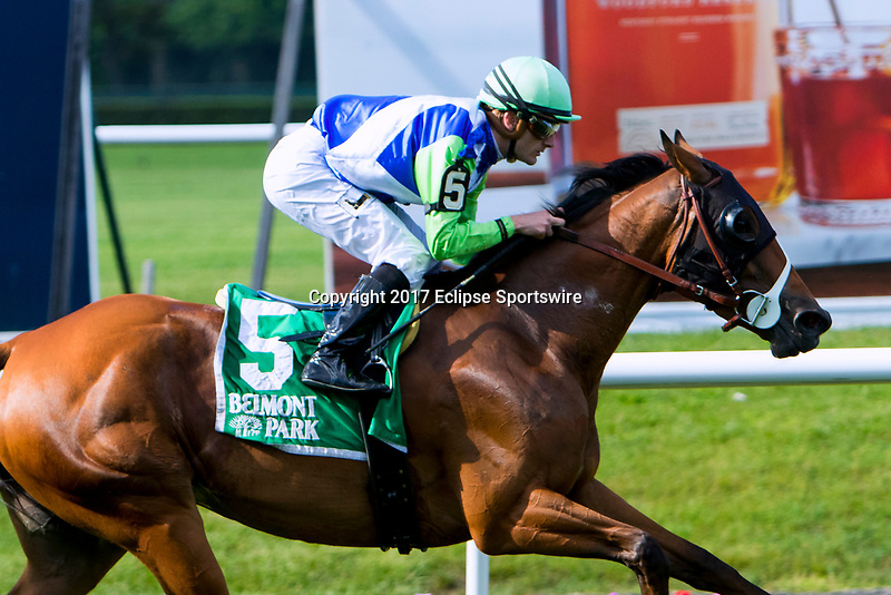 NEW YORKT, NY - JUNE 09  Hawksmoor(IRE), #5,  with Julien Lepareux. wins the New York Stakes on June 9, 2017 in Elmont, New York.(Photo by Sue Kawczynski/Eclipse Sportswire/Getty Images)