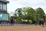 HOT SPRINGS, AR - APRIL 14: Magnum Moon #6, with jockey Luis Saez aboard before crossing the finish line in the Arkansas Derby at Oaklawn Park on April 14, 2018 in Hot Springs, Arkansas. (Photo by Justin Manning/Eclipse Sportswire/Getty Images)