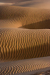Sand in the Thar Desert, Rajasthan, India