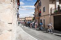 World Champion Alejandro Valverde (ESP/Movistar) in the peloton<br /> <br /> Stage 17: Aranda de Duero to Guadalajara (220km)<br /> La Vuelta 2019<br /> <br /> ©kramon