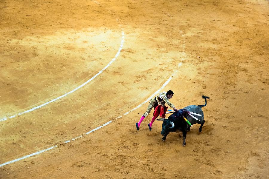 A Spanish bullfighter (matador) kills a bull with the sword at the bullring in Granada, Spain, 7 June 2006.
