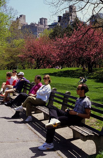 People sitting on a bench at spring time in Central Park, New York City, USA