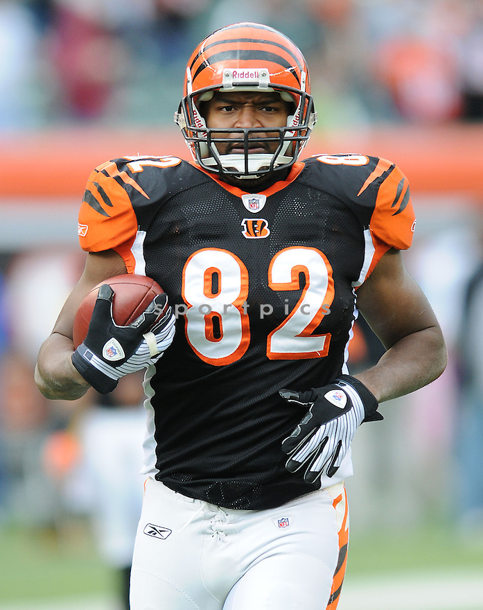 REGGIE KELLY, of the  Cincinnati Bengals , in action  during the Bengals game against the Washington Redskins on December 14, 2008 in Cincinnati, OH...Bengals win 20-13