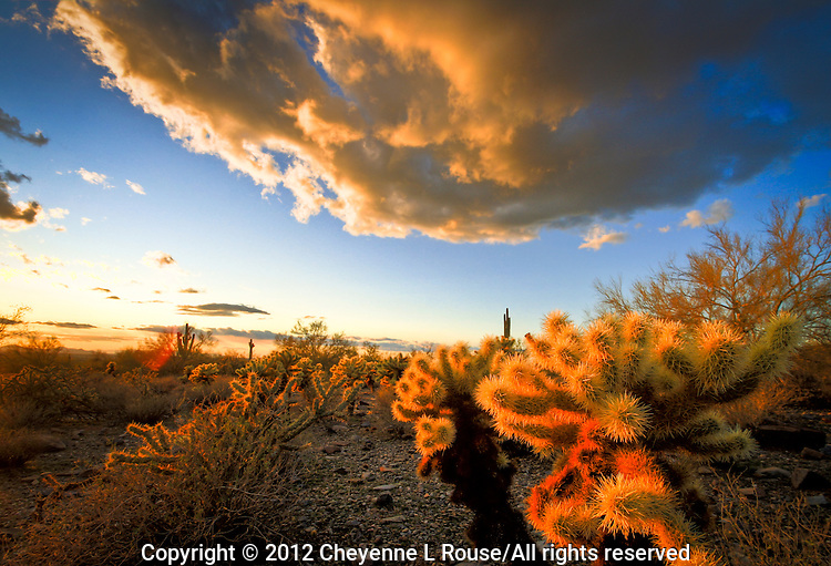 Desert Clouds at Sunset - Arizona - McDowell Mountains - Scottsdale