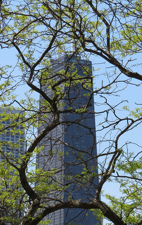 Chicago Scenes - Spring -  The John Hancock Center, seen from Milton Lee Olive Park on the banks of Lake Michigan. (DePaul University/Jamie Moncrief)