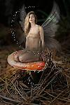 Fairy sat on a toadstool