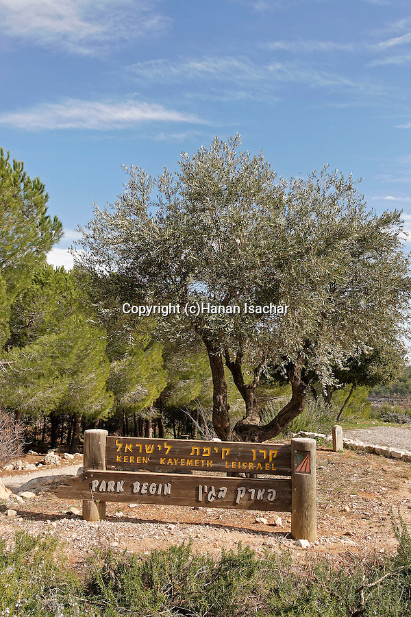 Israel, Jerusalem Mountains. The entrance to Begin Park from road 375