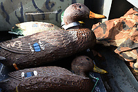 NWA Democrat-Gazette/FLIP PUTTHOFF <br /> Decoys are ready to be pressed into service Dec. 28 2018 at Beaver Lake.