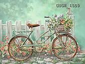 Dona Gelsinger, STILL LIFE STILLLEBEN, NATURALEZA MORTA, flowers, Blumen, flores, paintings+++++,USGE1559,#I#,#F# ,bicycles, ,everyday