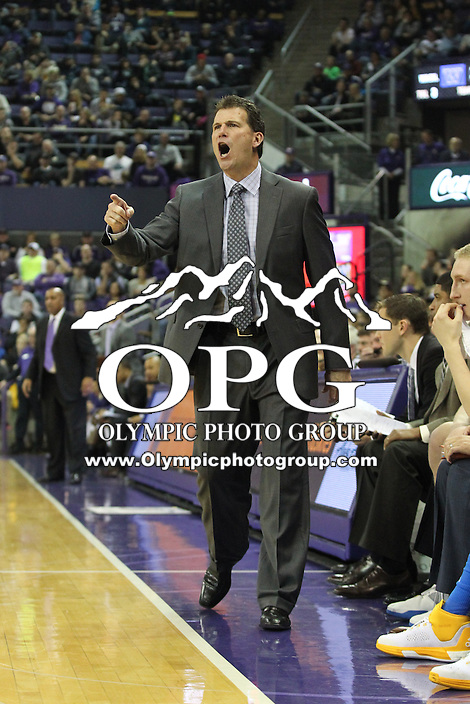 JAN 1, 2016:   UCLA head coach Steve Alford screams at his team from the bench against Washington.  Washington defeated #25 ranked UCLA 96-93 in double overtime at Alaska Airlines Arena in Seattle, WA.
