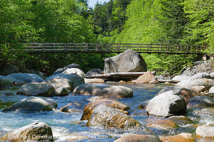 Dry River Wilderness - Foot bridge which crosses the Dry River along the Dry River Trail in Cutt's Grant of the New Hampshire White Mountains.