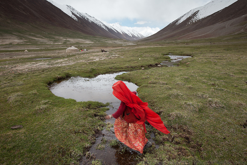 A young Kyrgyz girl runs after the family herd of yaks. Daily life at the Khan (chief) summer camp of Kara Jylga...Trekking through the high altitude plateau of the Little Pamir mountains (average 4200 meters) , where the Afghan Kyrgyz community live all year, on the borders of China, Tajikistan and Pakistan.