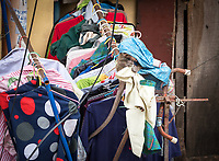 Monkey in Phnom Penh getting into some laundry that was hanging up for drying. Cambodia